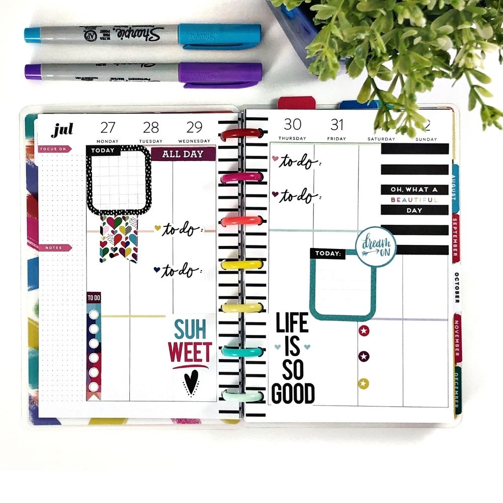 Colorful Happy Planner layout, black and white stripes, sharpies and green plant